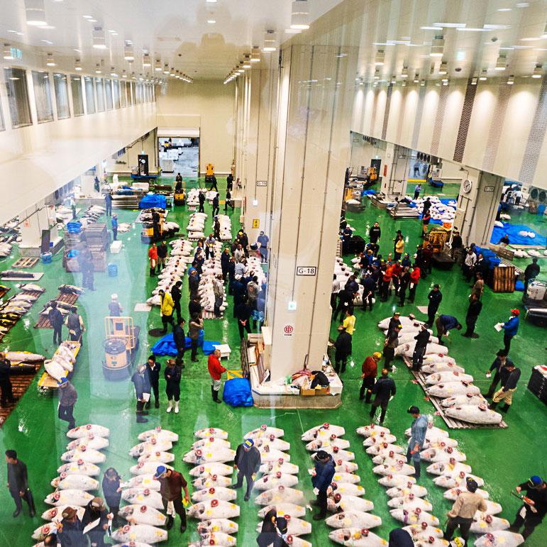 Toyosu finish market