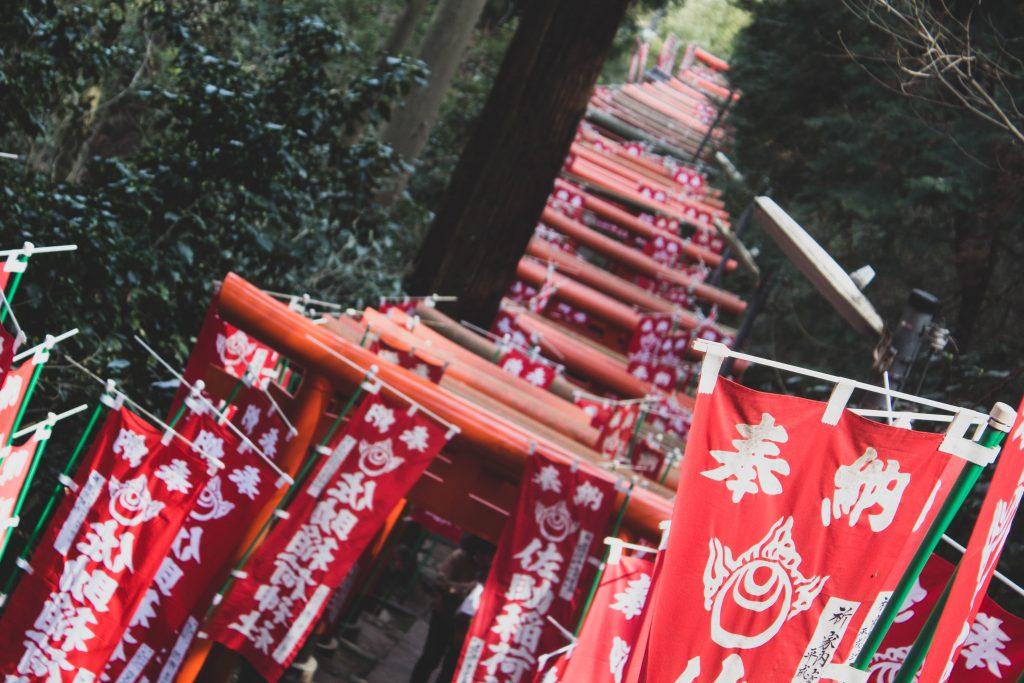 Sasuke Inari Shrine torii gates