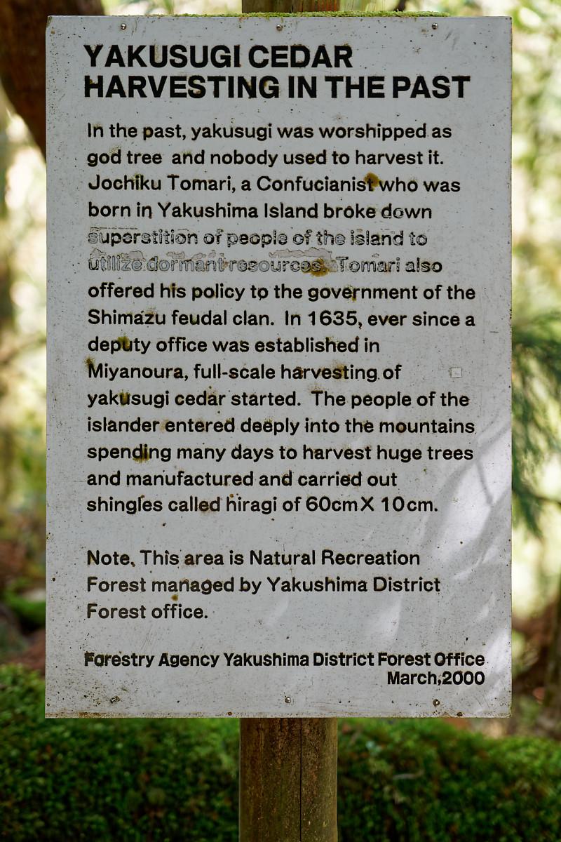 Cedar Harvest Information Sheet in Yakusugi Land