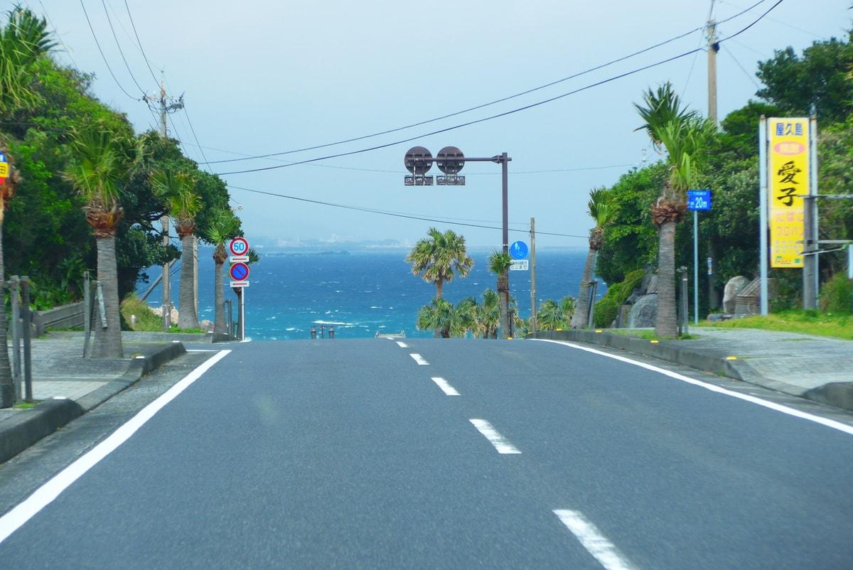 Driving in Yakushima