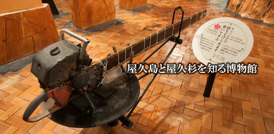 Yakushima Museum